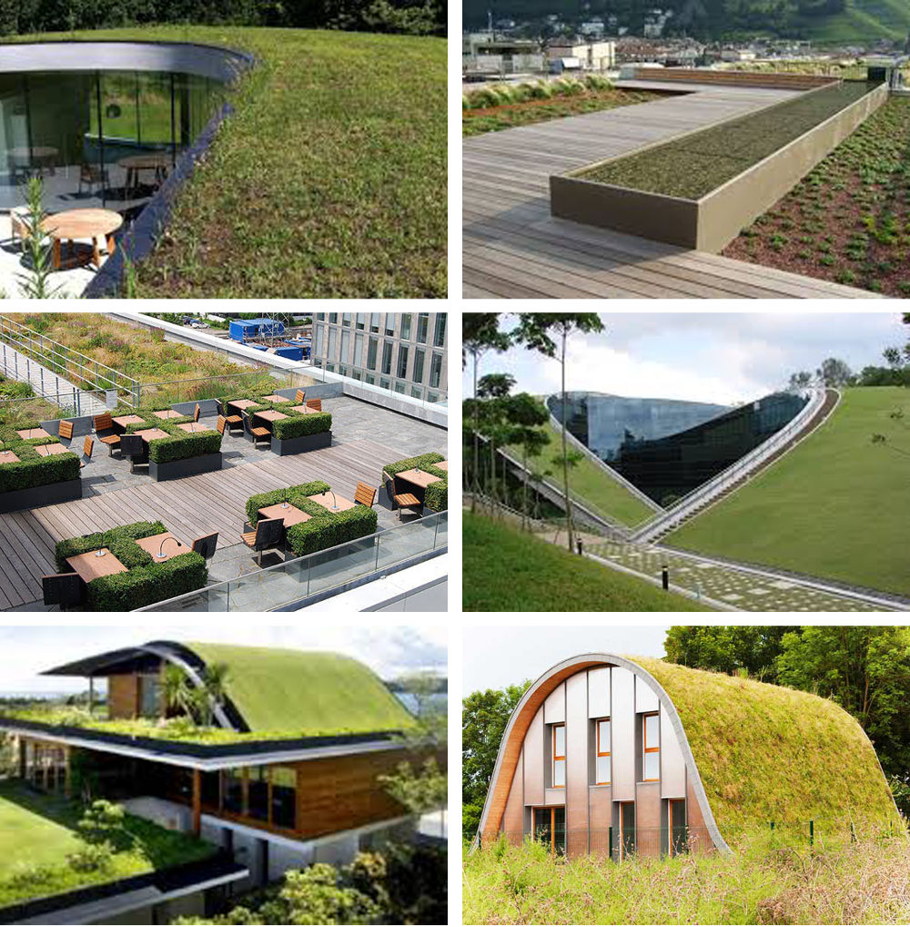 spazi comuni potenzialità e vocazione - tetto giardino